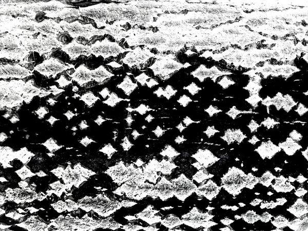 品析中国树皮创意摄影第一人朱晋先生       从容 2015-08-07 - 从容观察 - 诗词 摄影 书法 评论 新闻