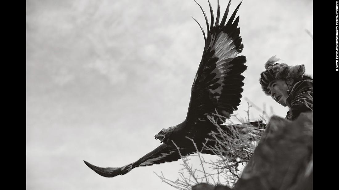 阿尔泰山区的哈萨克人驯鹰捕猎