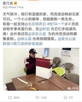 温情贾乃亮上线秒拍,呼吁粉丝帮流浪动物过暖冬