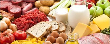 人可以只靠1种食物维生吗?